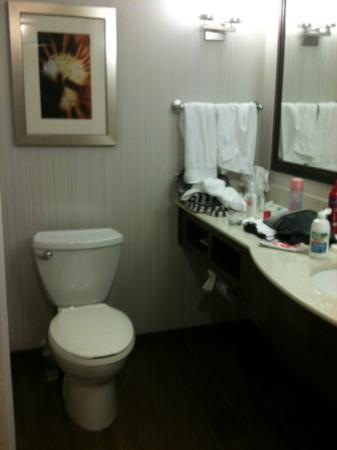 Hilton Garden Inn Raleigh-Durham/Research Triangle Park: Clean Bathroom