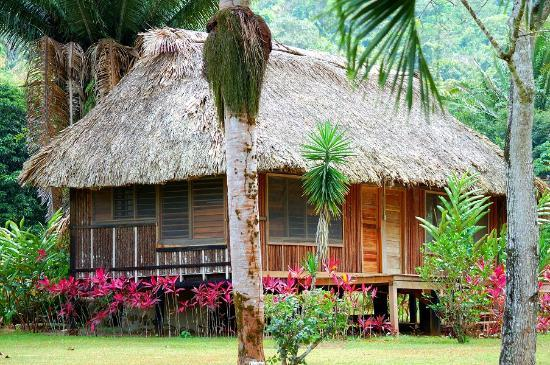 Bocawina Rainforest Resort & Adventures: Dschungel Lodge
