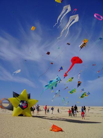 Parque Natural de Corralejo: Kites