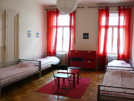 Activity Hostel : 6 bedded room