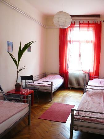 Activity Hostel : 4 bedded room