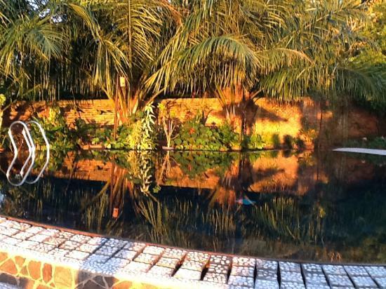Lumbalumba Diving: Pool reflecting the sunset