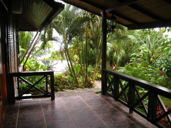 Lumbalumba Diving: My patio (Mandarin room) looking out to pool, the gardens, and the sea