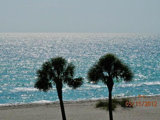 Veranda Beach Club: Sunny day...