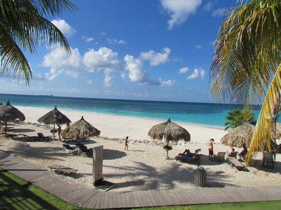 Amazing room view picture of divi village golf and beach - Divi village golf and beach resort ...