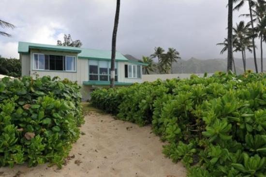 Punaluu Beach Cottage : vue de l'exterieur
