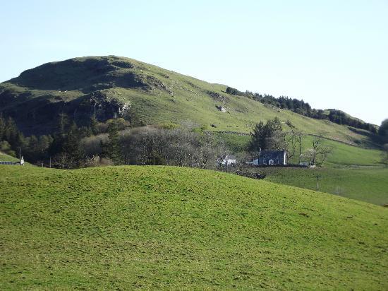 Miefield Farm