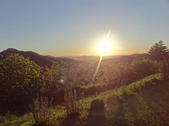 Entre Azur et Maures : valley of the Alps