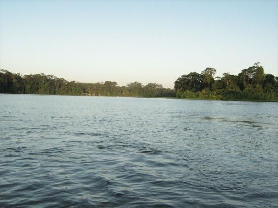 Rana Roja Lodge: Tortuguero Canal