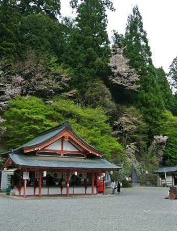 Kanazakura Shrine : 境内
