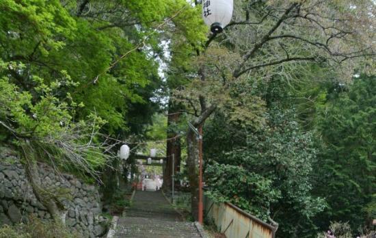 Kanazakura Shrine : 石段をのぼる前