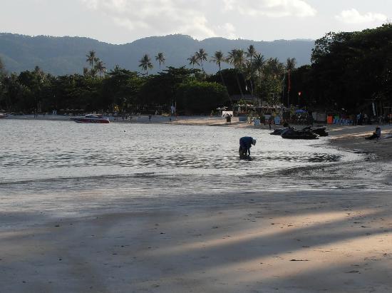 Novotel Samui Resort Chaweng Beach Kandaburi: strand am abend