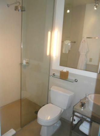 Chambers Hotel: bathroom with a big shower head