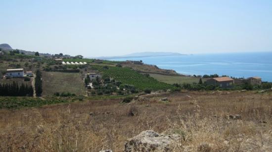 B&B Casa Malerba : La casa Malerba, les vignes , la mer