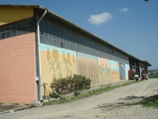 Agriturismo La Mussia: Stall von hinten
