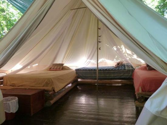 Palmar Beach Lodge Cozy comfortable dorm tent. & Cozy comfortable dorm tent. - Picture of Palmar Beach Lodge Isla ...