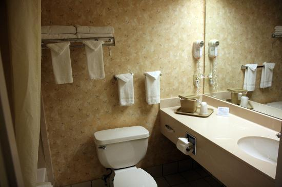 Holiday Inn Express & Suites Lincoln East - White Mountains: Salle de bains