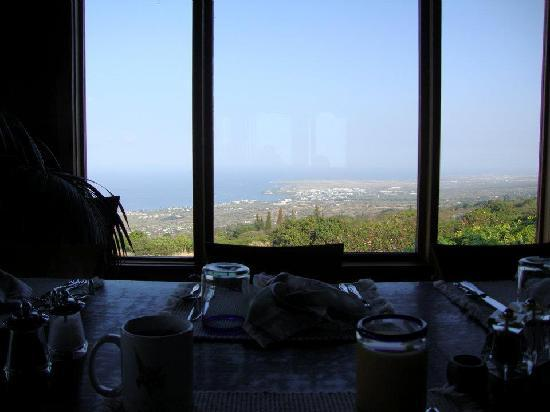 Holualoa Inn: view from the breakfast table