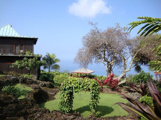 Holualoa Inn: beautiful, spacious grounds!