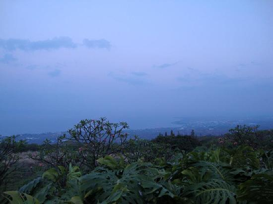 Holualoa Inn: early morning view, overlooking kalua-kona