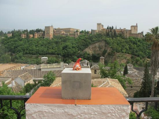 Las Tres Terrazas: View from the terrace