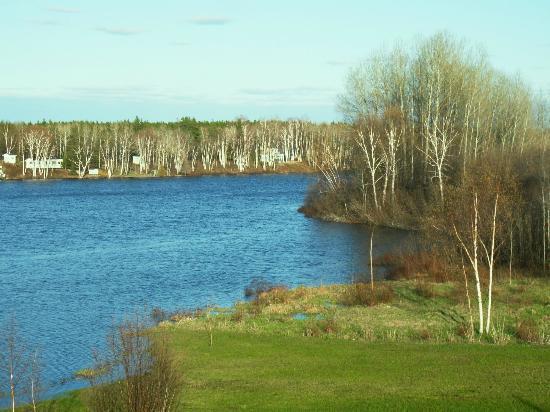 Aux Saveurs Du Lac : vue sur le lac depuis la maison