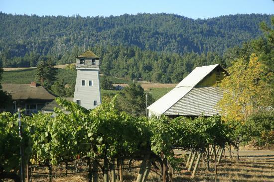 Handley Cellars Winery: water tower and barn