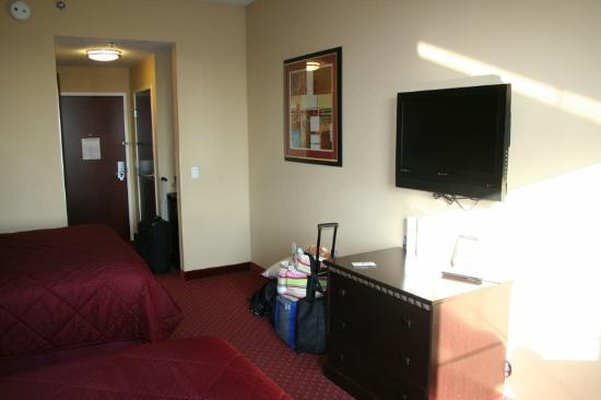Comfort Inn & Suites Maingate South: guest room