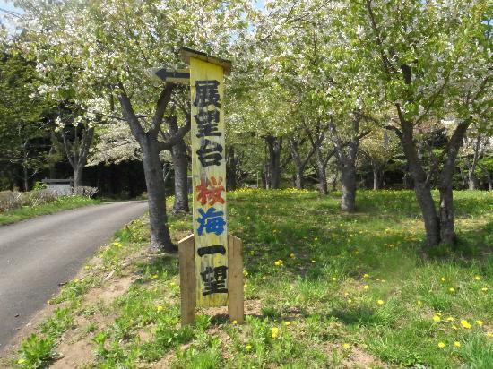 Matsumae Park: 展望台看板