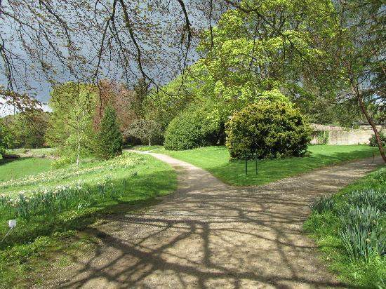 Harrogate, UK: gardens