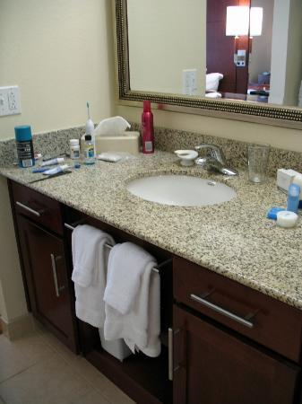 Residence Inn Pittsburgh Monroeville/Wilkins Township: Sink separate from shower / toilet area with lots of storage.