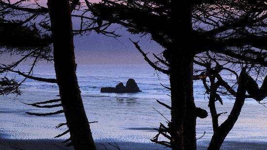 Copalis Beach, WA: Copalis Rock