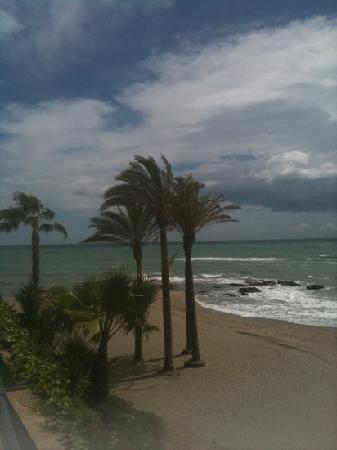 Las Arenas Hotel: the beach