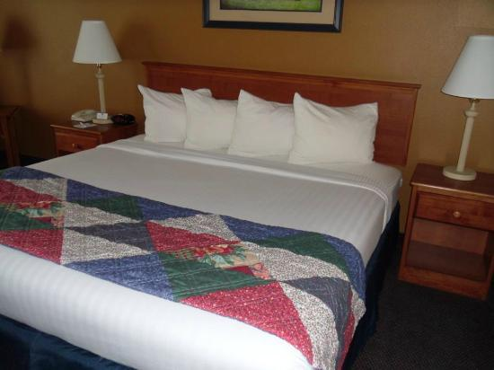 BEST WESTERN Wheatland Inn: Bed was of average comfort, light on blankets but you can ask for more