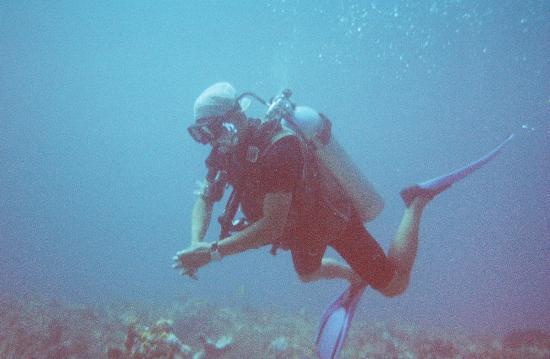 Mayan Aqua Dive: Ulises