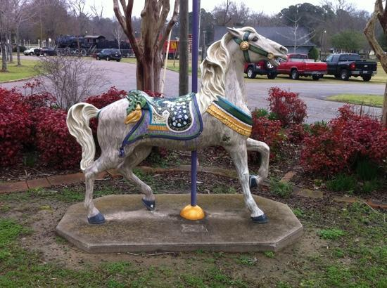 Meridian, MS: a horse