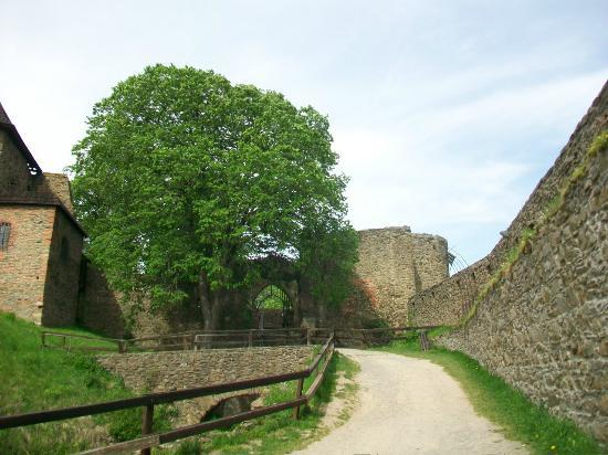 Helfstyn Castle: Courtyard