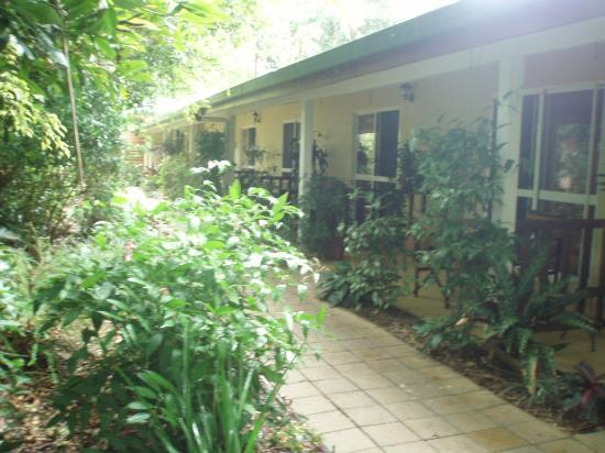 Kookaburra Lodge: Looking towards the room from the stairs leading to the Garden