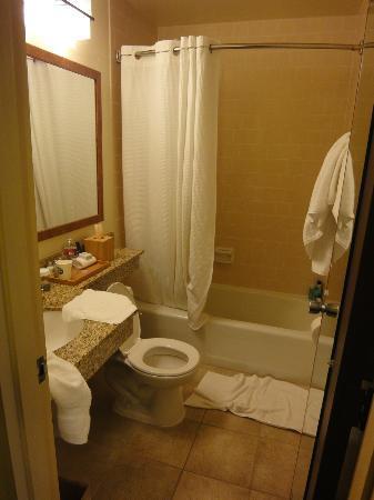 Holiday Inn Express Mill Valley San Francisco Area: Bathroom