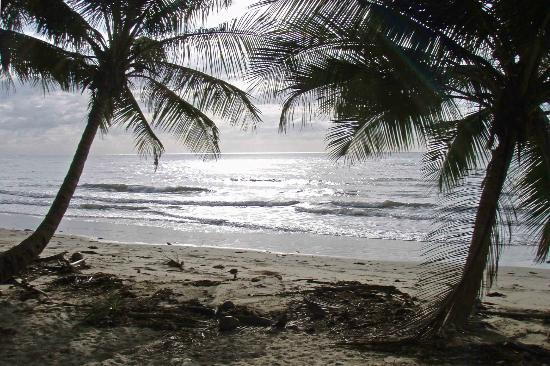 Port Douglas Surf Club Bar & Bistro: Four Mile Beach