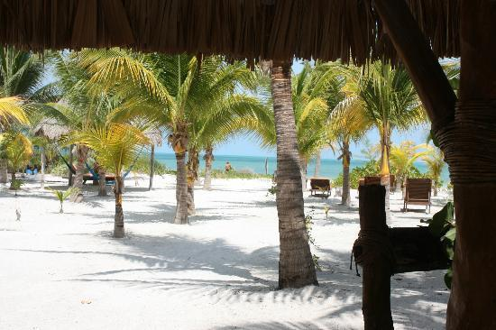 Zomay Hotel Holbox: View from the Orange bungalow