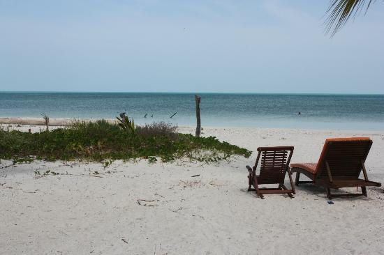 Zomay Hotel Holbox: Beach in front