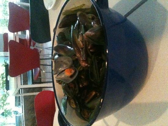 Belgian Beer Bar/restaurant: mussels/belgian fries...