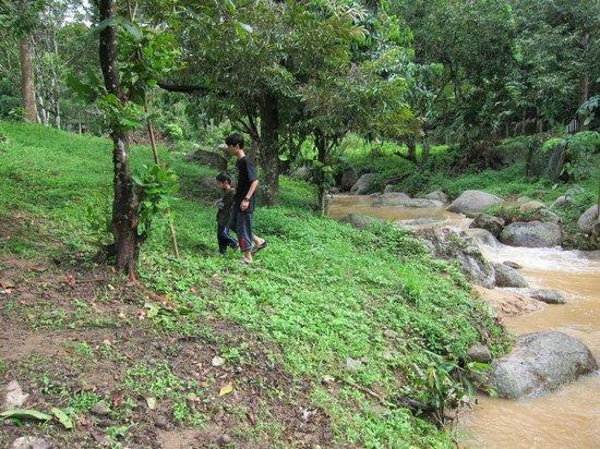 Kati, Malaysia: Stream after heavy rain