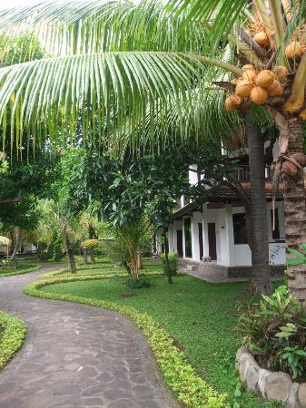 Rini Hotel: territory