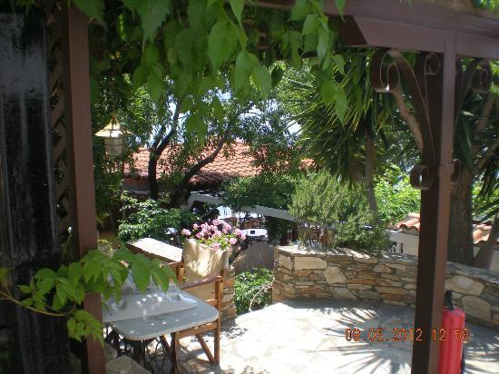 Pounda Paou: Hotel Garden