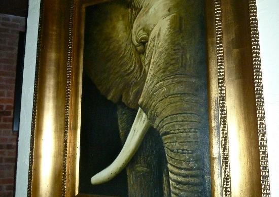 Maximo's Elephant photo