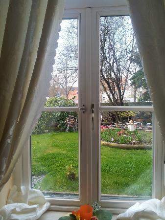 Hotel Kaiser Hof: lovely garden