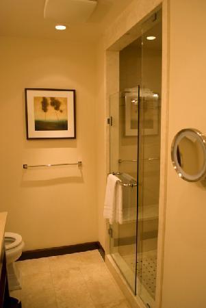 ذا سانت ريجيس هوتل: Bathroom