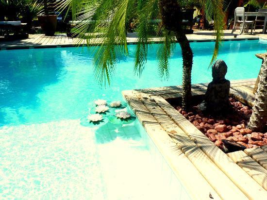 Cor da Terra: Linda piscina perto do jardim tropical